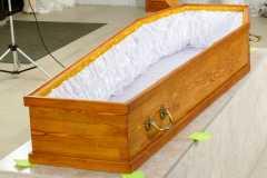 Цинковый гроб/евроцинк